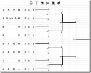 県総体結果 空手道競技